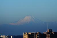 房総からの朝富士 - 日々の風景