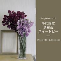 予約限定頒布会スイートピー2021 - Impression Days