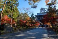 南禅寺の紅葉2020 - ぴんぼけふぉとぶろぐ2