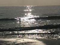 海が少し早く春の気配をさせてきたとき - 海辺のセラピストは今日も上機嫌!