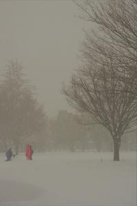或る雪の日 - Don't think, feel