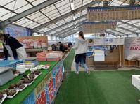カキ小屋 - ちょんまげブログ