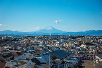 藤沢 本在寺公園から見た富士山 - エーデルワイスPhoto