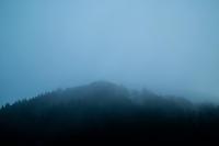 濃い山霧・0.1℃の朝朽木小川・気象台より - 朽木小川・気象台より、高島市・針畑・くつきの季節便りを!