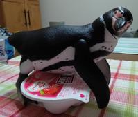 守るペンギン - Ginmani's Blog