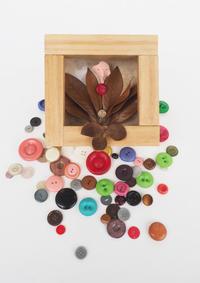 ボタンの見た夢 - 日々の営み 酒井賢司のイラストレーション倉庫