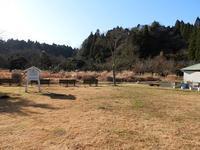 4月並みの暖かさ - 千葉県いすみ環境と文化のさとセンター