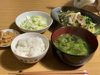 セロリ定食 - (仮)ねこと平屋