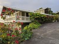 ハワイ島生活 - サンフランシスコ生活