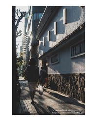 陽にあたる時 - ♉ mototaurus photography