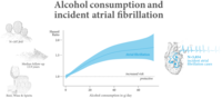 1日1ドリンクの飲酒で心房細動発症のハザード比は1.18:EHJ誌より - 心房細動な日々