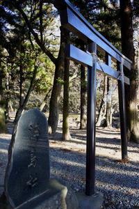 長野そぞろ歩き・諏訪:万治の石仏 - 日本庭園的生活