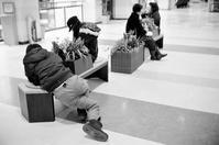 姿勢を正すウオーキング中に見た自由な姿勢 - 照片画廊