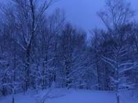 冬の朝 - 何もしない贅沢