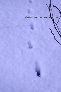 「冬のソナタ」をもう一度 - あおいくまの子守歌