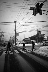 目的地で雪はやんでいた20210117 - Yoshi-A の写真の楽しみ