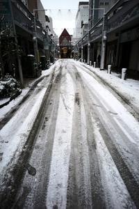 コロナの年に大雪が降った#12荒涼を旅する20210102 - Yoshi-A の写真の楽しみ