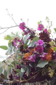 さっちゃん先生(^^♪ - お花に囲まれて