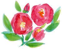 咲く - ことりごと2
