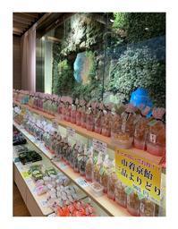 エキュート品川最終日! - 【飴屋通信】 京都の飴工房「岩井製菓」のブログ