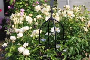 妄想その① - my small garden~sugar plum~