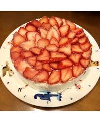 レアチーズケーキと体育館の話 - シニアのバドミントン練習ブログ