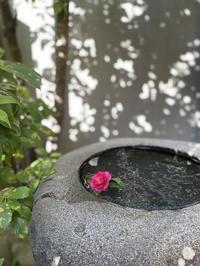 #iPhone12正月限定京都白味噌お雑煮を食べに行った件w - 関西ウォーカー自遊人 Trial