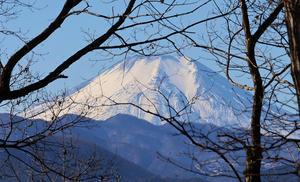 富士山 - 陣馬一ノ尾四季便り