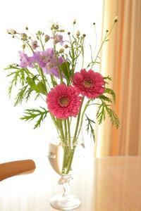 お花を買いました 🌼 - 笑顔がいちばん ♪