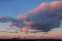 朝陽に染まるロール雲(高積雲) - 日々の風景