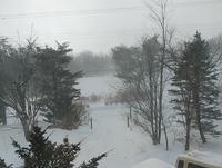 今日は晴れ時々地吹雪 - 標高480mの窓からⅡ