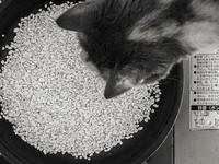 カセットコンロで炊飯 - モノクロ写真をアップする!
