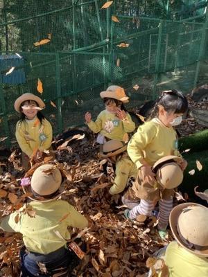 3学期が始まりました! - 太陽幼稚園☆保育日記