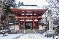 雪の日室生寺 - toshi の ならはまほろば
