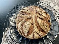 ワインブロートから『赤ワインのカンパーニュ』へ - カフェ気分なパン教室  *・゜゚・*ローズのマリ