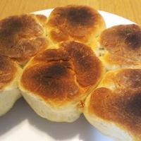フライパンでフォカッチャ、ホタテと白菜のクリーム鍋 - Hanakenhana's Blog