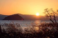夕日 - お散歩写真