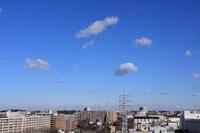 冬晴れにポッカリ浮かんだわた雲(積雲) - 日々の風景