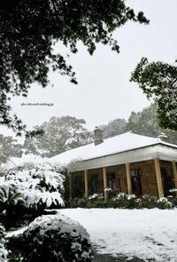雪のオルト邸 - A  B  C