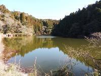 寒い季節の生きものたち - 千葉県いすみ環境と文化のさとセンター