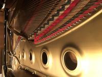 ピアニストになるために必要な学び(弾くこと以外)〜調律師さんの動画紹介!! - ピアニスト&ピアノ講師 村田智佳子のブログ