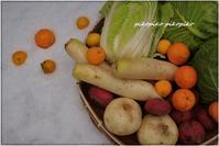 雪上お野菜 - 今が一番