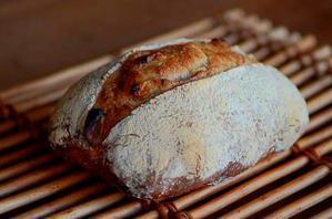 カンパーニュとか - 森の中でパンを楽しむ