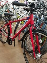 扱いやすいスポーツバイク - 滝川自転車店