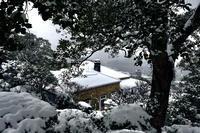 雪のグラバー園 - A  B  C