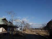 大寒を過ぎて - 千葉県いすみ環境と文化のさとセンター