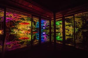2020滋賀紅葉~旧竹林院ライトアップ - 鏡花水月