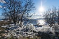 夕刻の飛沫氷(琵琶湖) - 花景色-K.W.C. PhotoBlog