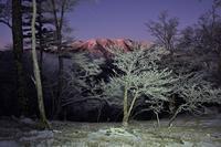 弥山のモルゲンロートを眺める一ノ峠~天川辻 - 峰さんの山あるき