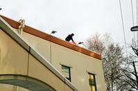 屋根の雪下ろしと転落事故 - 照片画廊